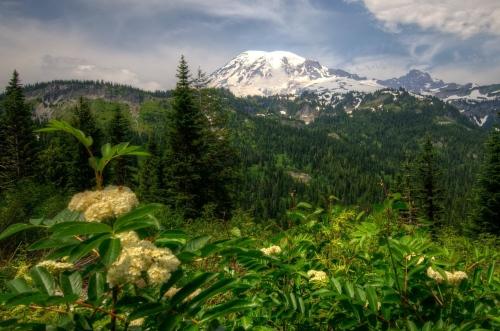 Собрание фото красивой природы нашей планеты