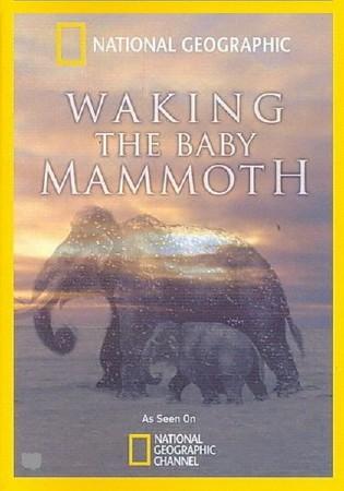 Мамонтёнок: застывший во времени (Пробуждение мамонтёнка) / Waking the Baby Mammoth (2009) HDTVRip (AVC)