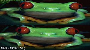 Маленькие монстры: Спрятаться и обмануть 3D / Little Monsters: Hide and Cheat 3D  ( by Ash61) Вертикальная анаморфная