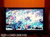 c486d7c08deacce2d0f76775c4836bde.jpeg