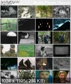 Рядовой Евгений Родионов  (2008) DVDRip