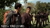 Ниндзя 2 / Ninja: Shadow of a Tear (2013) BDRemux | DVO
