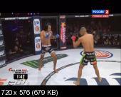 ��������� ������������. MMA. Bellator 133: Shelmenko vs. Manhoef [13.02] (2015) DVB