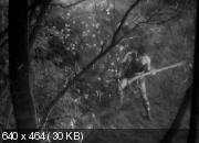 Семь самураев (1954) DVDRip