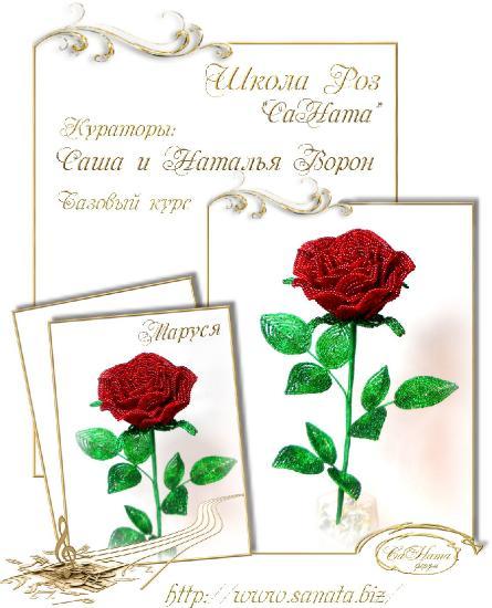 Школа Роз. Выпуск Базового курса 8d5c59cd0862eae1ff66d37a4a43e2e4