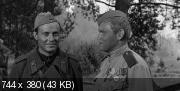 Весна на Одере (1967) DVDRip (AVC)