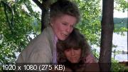 На золотом пруду (У золотого озера) (1981) BDRip (1080p)