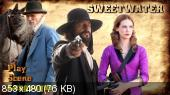 ������� ���� / Sweetwater (2013) DVD9
