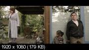 Три четверти луны (2011) Blu-Ray Remux (1080p)