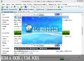 SlimBrowser 7.00 Build 130 - ��� �������
